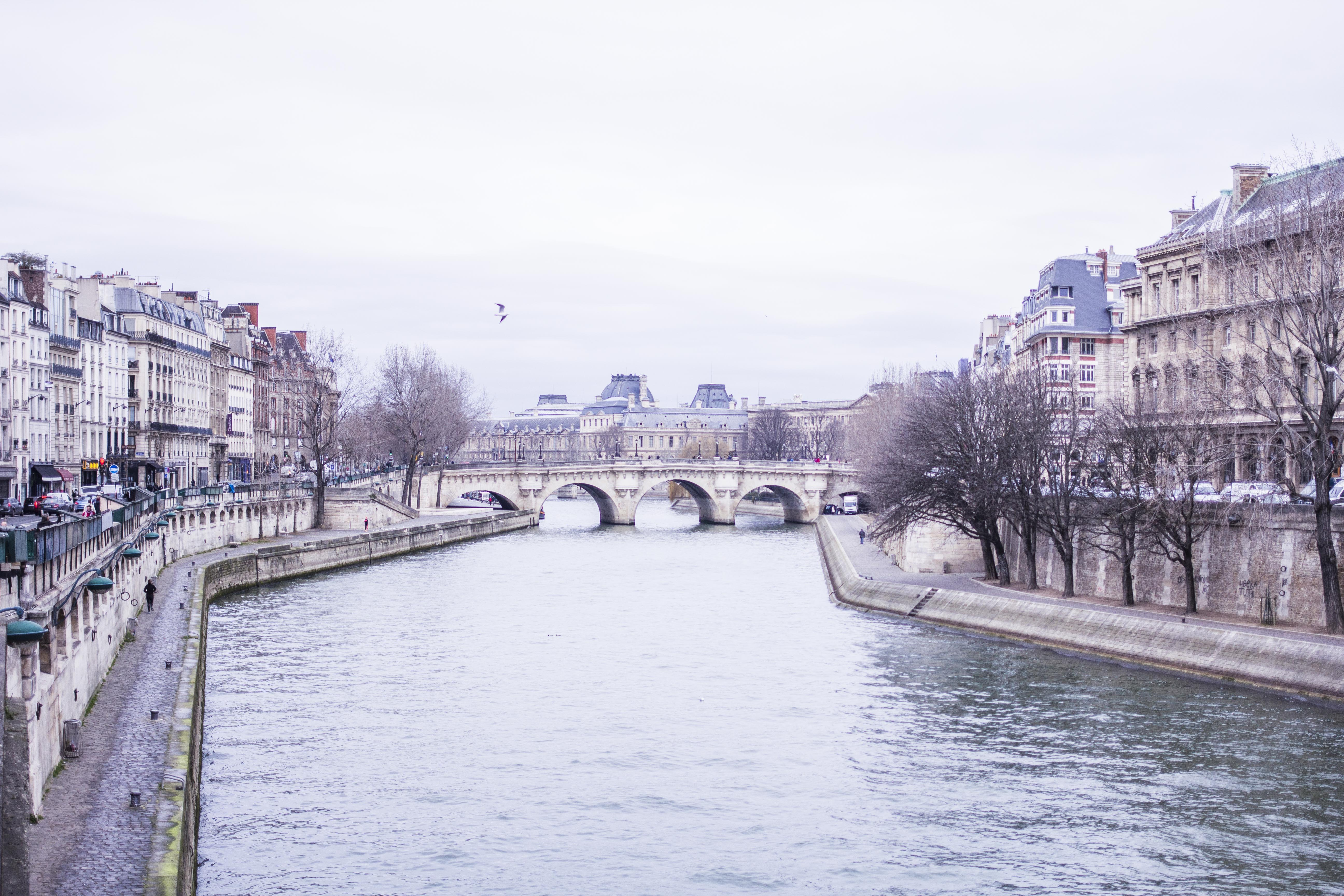 Parisian winter walk
